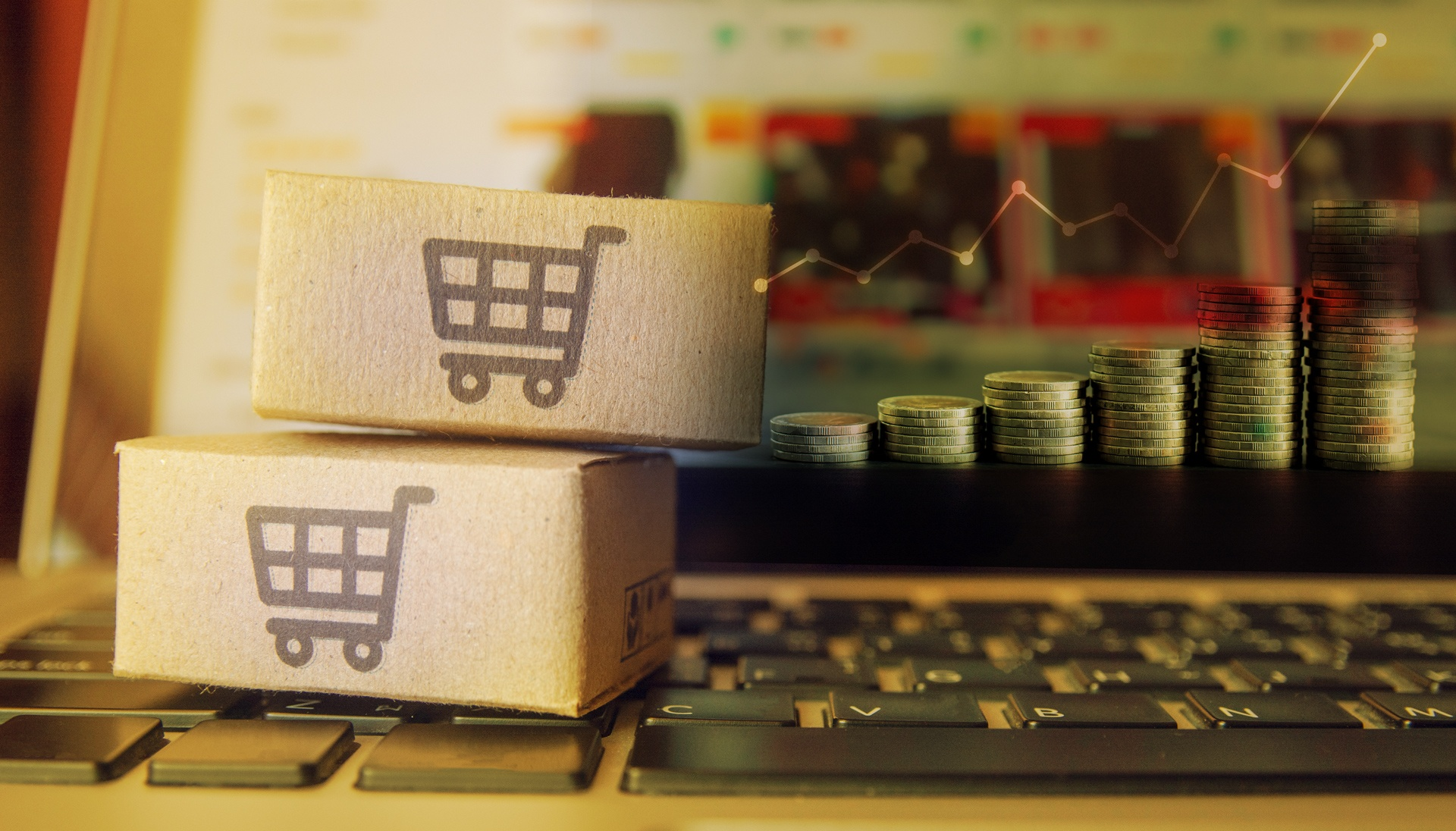 ecommerce business for sale